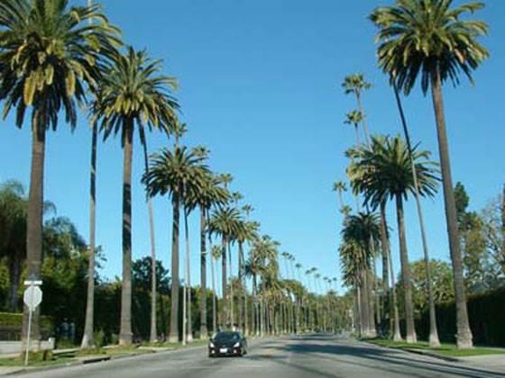 Beverly-Hills-Беверли-Хиллз-обитель-роскоши-1