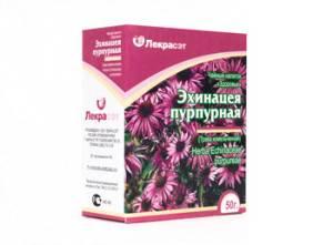 Травы-укрепляющие-иммунитет-эхинацея-пурпурная-4