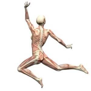 Здоровье-костей-1