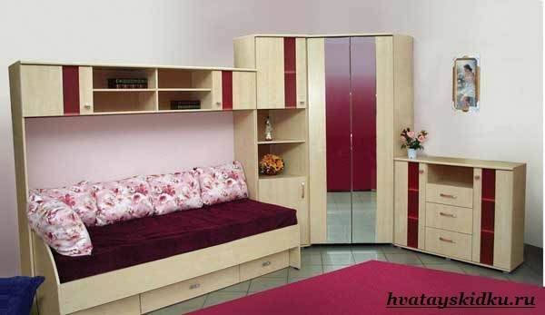 Шатура-мебель-1