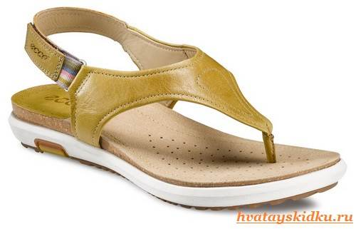 Экко-обувь-2
