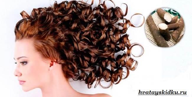 Свойства-лопуха-Маска-для-волос-из-корней-лопуха-2